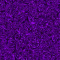 lila1